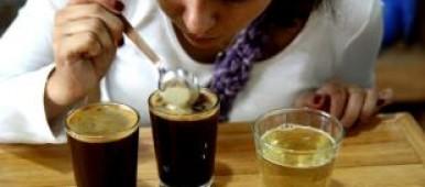 café bio colombie