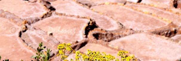 vallée sacré des incas